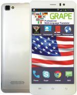 Переводчики 5 дюймов: Голосовой переводчик GRAPE GTS-5s v.1